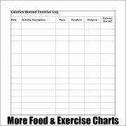 Free printable exercise charts.